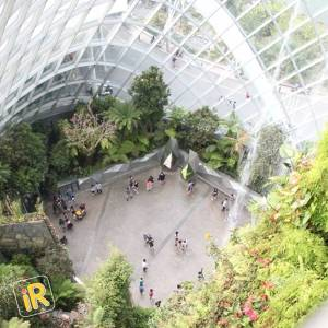 How to plan an amazing holiday in Singapore - Instareview - Floral Dome
