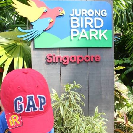 How to plan an amazing holiday in Singapore - Instareview - Jurong Bird Park